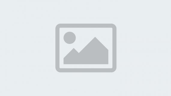 Domovnicek logo